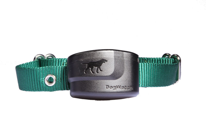 DogWatch S1200 Extra Receiver Collar